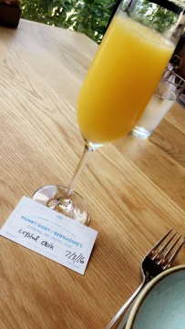 Mimosa and my membership card